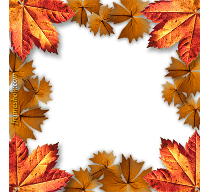 automn leaves photo frame
