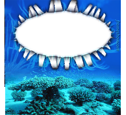 ocean photo frame